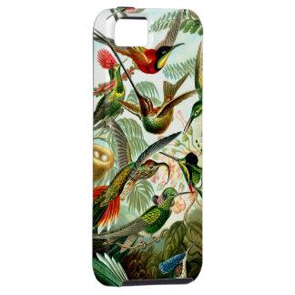 Hummingbirds Birdwatcher's iPhone4 Case