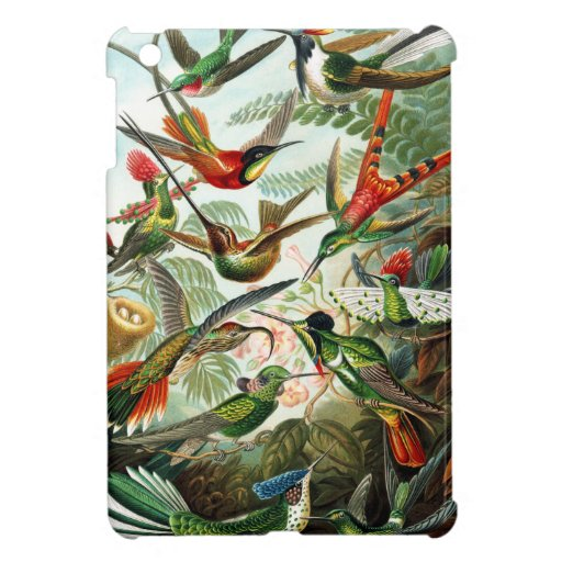 Hummingbirds by Ernst Haeckel Cover For The iPad Mini