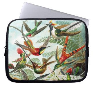 Hummingbirds by Ernst Haeckel Laptop Sleeve
