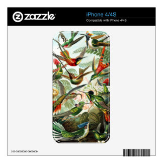 Hummingbirds by Ernst Haeckel Skin For iPhone 4
