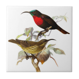 Hummingbirds Ceramic Tile