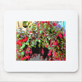 Hummingbirds Delight Mouse Pads