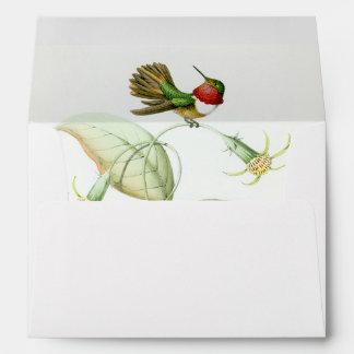 Hummingbirds Envelope
