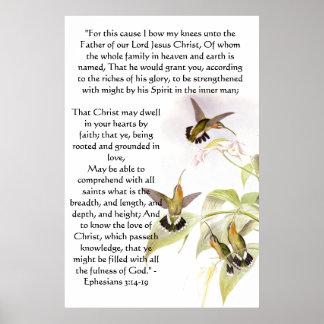 Hummingbirds Ephesians 3 Print Poster