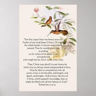 Hummingbirds Ephesians 3 Print Posters