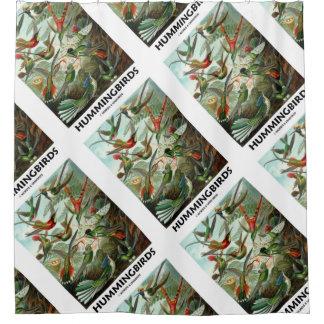 Hummingbirds Ernest Haeckel Artforms Of Nature Shower Curtain