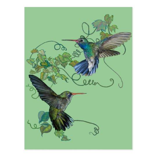 Hummingbirds Flight Postcard