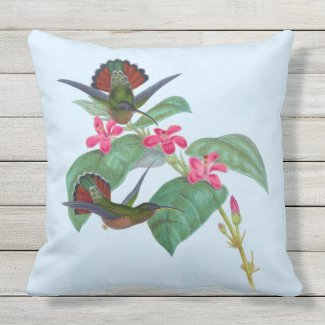 Hummingbirds Flowers Sky Blue Outdoor Pillow 20x20