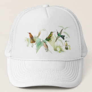 Hummingbirds Hat