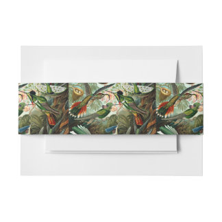Hummingbirds Invitation Belly Band