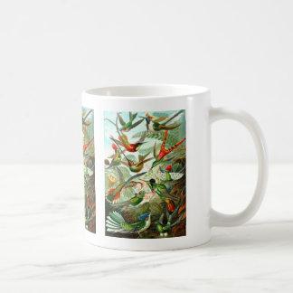 Hummingbirds Mugs