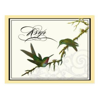 Hummingbirds n Swirls -  Wedding Postcard RSVP
