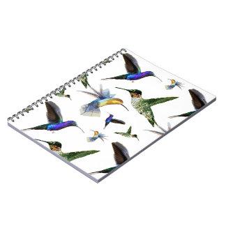 Hummingbirds Notebook