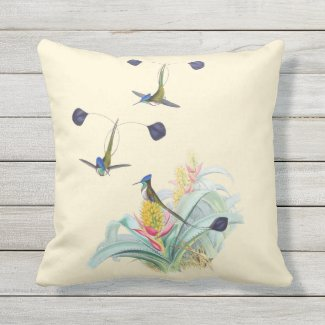 Hummingbirds on Bromeliads Outdoor Pillow 16x16