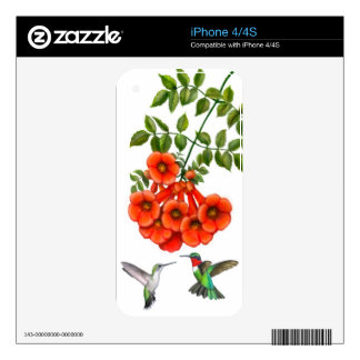 Hummingbirds on Trumpet Vine Zazzle Skin Decals For iPhone 4S