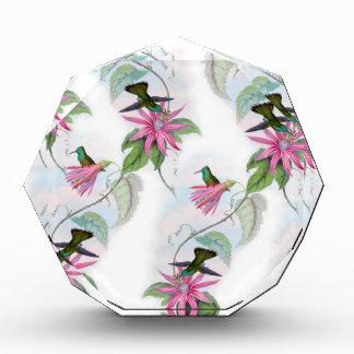 Hummingbirds pattern award