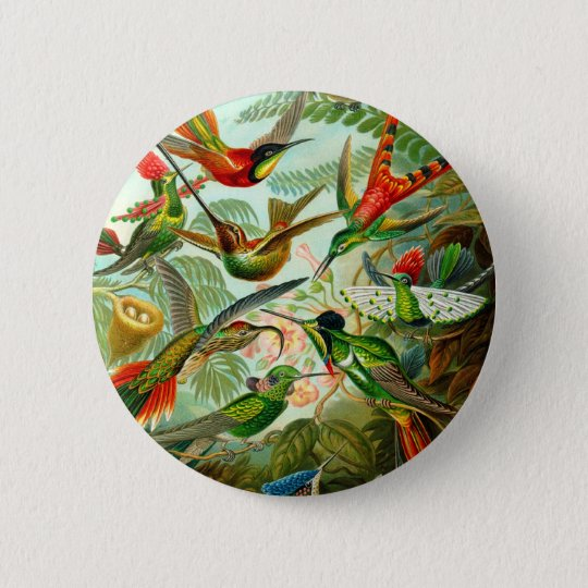 Hummingbirds Pinback Button