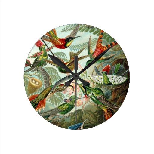 Hummingbirds Round Wallclocks