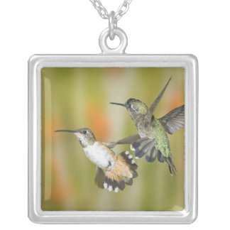 Hummingbirds Silver Plated Necklace