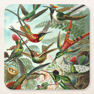 Hummingbirds Square Paper Coaster