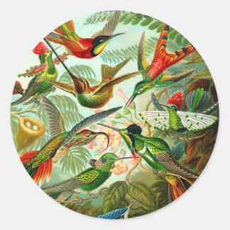 Hummingbirds Round Stickers