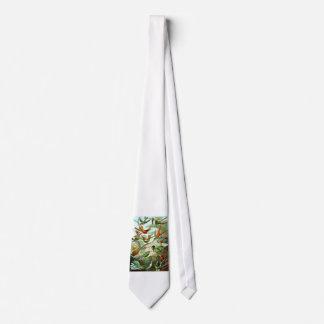 Hummingbirds Tie