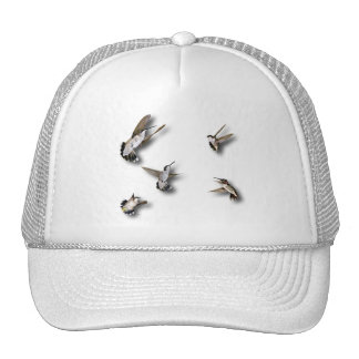 Hummingbirds Trucker Hat