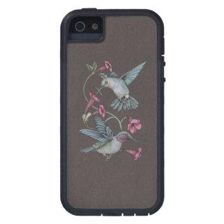 Hummingbirds Vine iPhone 5 Case