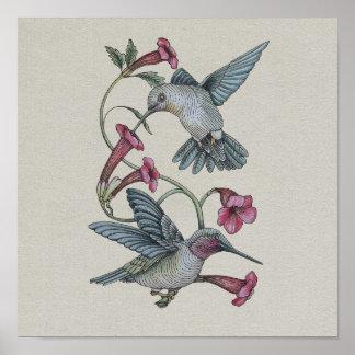 Hummingbirds & Vine Poster