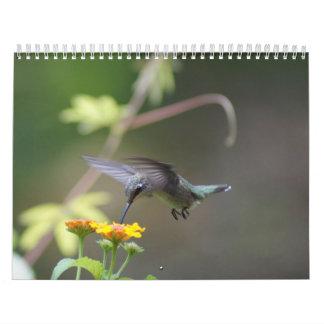 Hummingbirds Year 'Round Wall Calendars