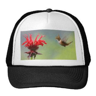 Hummingcat Trucker Hat