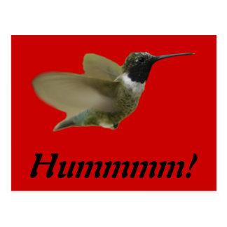 hummmming Hummingbird Postcard