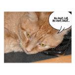 Humor anaranjado del gato de Tabby Postales