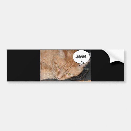 Humor anaranjado del gato de Tabby/teléfono celula Pegatina Para Auto