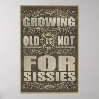 Humor de la edad avanzada poster