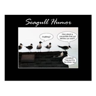 Humor de la gaviota