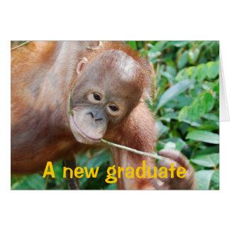 Humor de la graduación tarjeta de felicitación