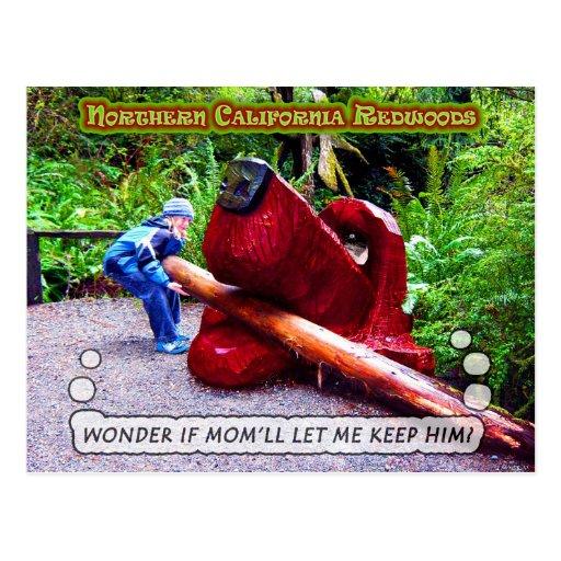 Humor de las secoyas de California Postales