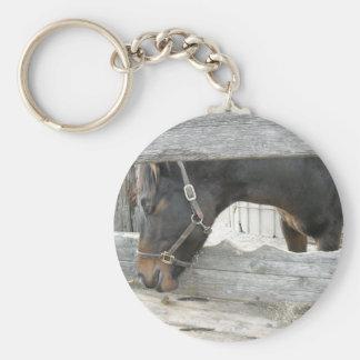 Humor del caballo del granero llavero redondo tipo pin