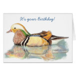 Humor del cumpleaños - pato de la edad avanzada felicitaciones