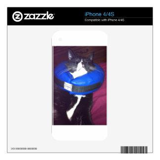Humor del gato calcomanías para iPhone 4
