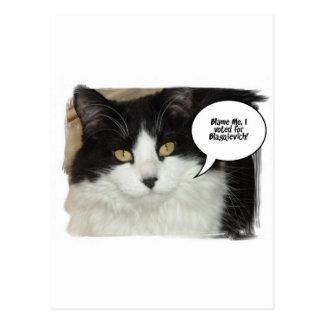 Humor del gato de Rod Blagojevich Postales