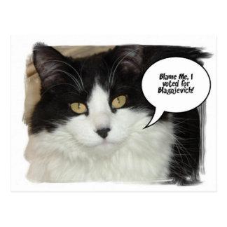 Humor del gato de Rod Blagojevich Postal