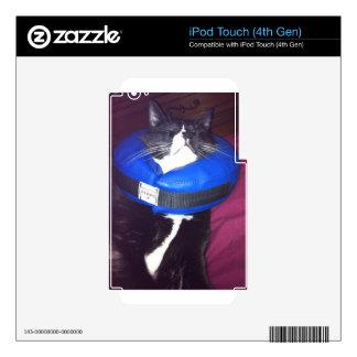 Humor del gato iPod touch 4G skin