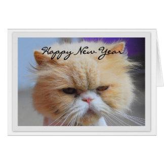 Humor del gato persa de la Feliz Año Nuevo Felicitaciones