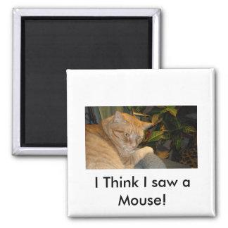Humor del gato y del ratón imán cuadrado
