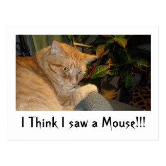 Humor del gato y del ratón tarjetas postales
