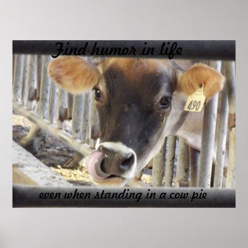 Humor del hallazgo en vaca de la vida póster
