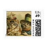 Humor del vintage, gatos del novio de la novia del sello postal