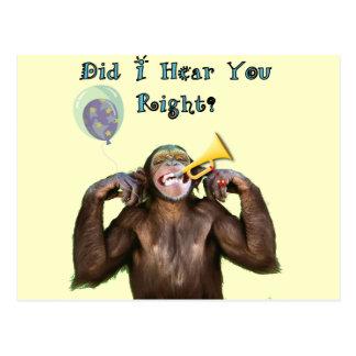 Humor divertido del chimpancé que consigue la postal